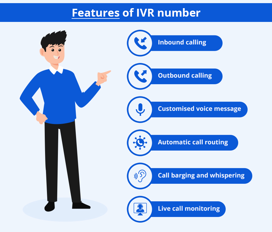 IVR number features